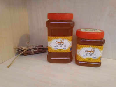 عسل بهاره 40 گیاه انگپین