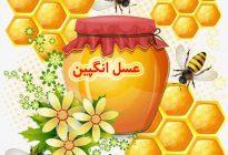 تقویت حافظه با عسل