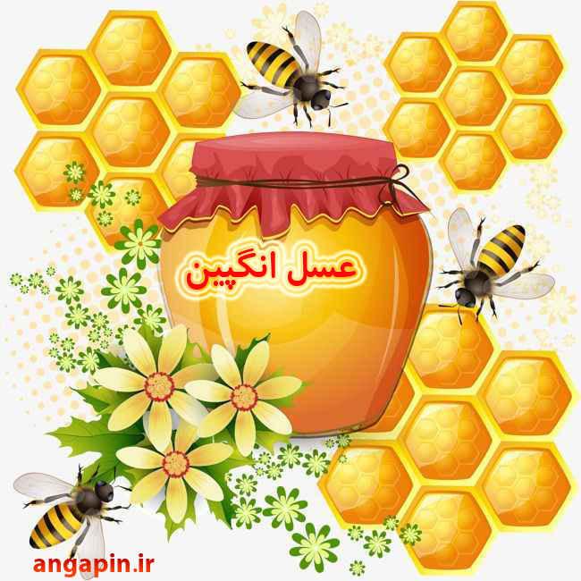 تقویت حافظه با عسل طبیعی