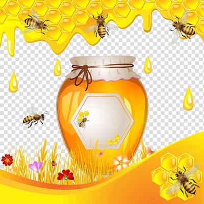 عسل طبیعی انگپین