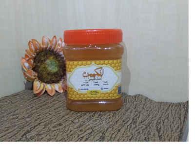 عسل گون گشنیز